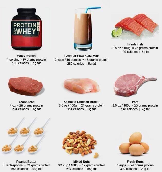 Top 10 Foods High In Protein
